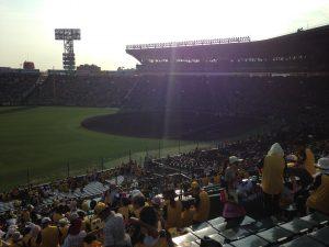 Baseball03_Wee